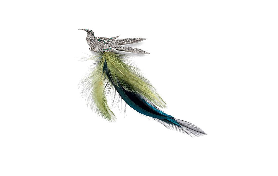 Le monde enchanté des oiseaux